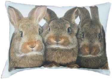 canvas kussen met 3 konijnen