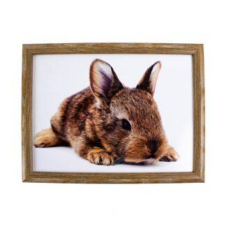 laptray liggend konijn