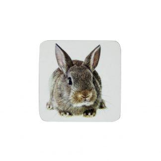 onderzetters konijn