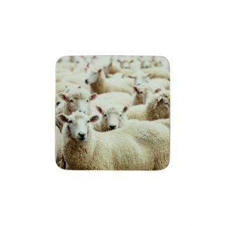 onderzetters schapen